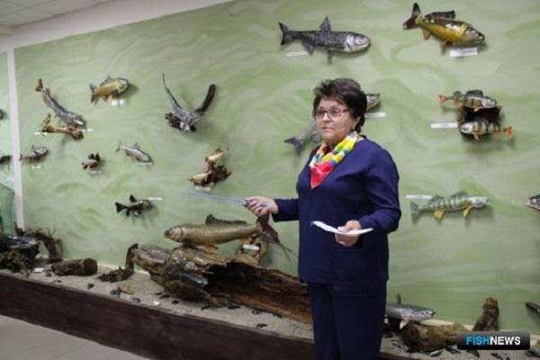 На ростовском хуторе открылся музей рыбы