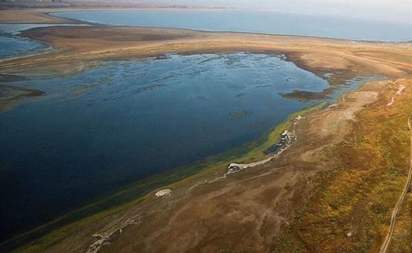 В Краснодарском крае начнут чистить лиманы
