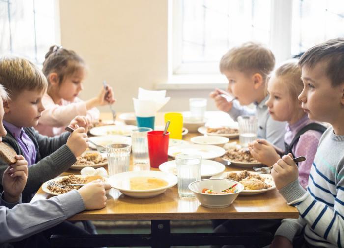 В Рязанской области родителям предложили оплачивать бесплатное питание