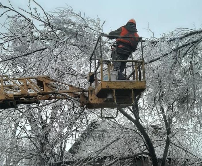 Ущерб от ледяного шторма в Приморье оценили в 700 млн рублей.