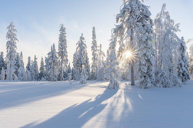 В феврале в Москве ожидаются 30-градусные морозы
