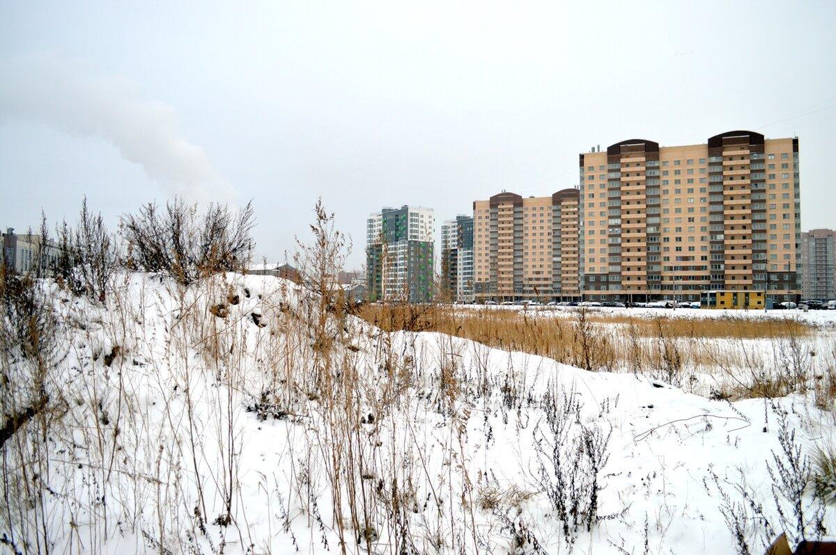 Эколог Грибалев рассказал, где можно взять деньги для ликвидации золоотвала на Дальневосточном