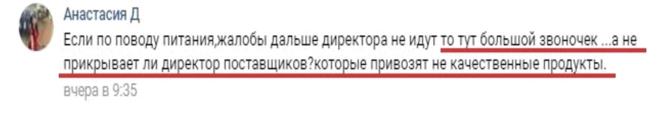 Школа № 362 в Петербурге столкнулась с жалобами родителей на питание и работу директора. 9530.jpeg