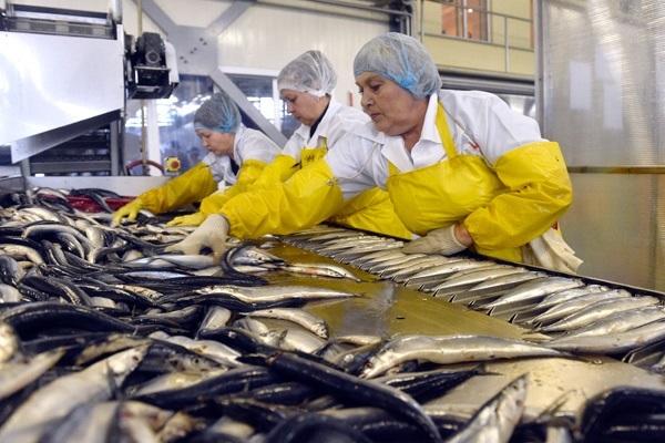 Рыбачки США подвергались сексуальным домогательствам