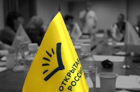 Оппозиция запустила аналог украинского
