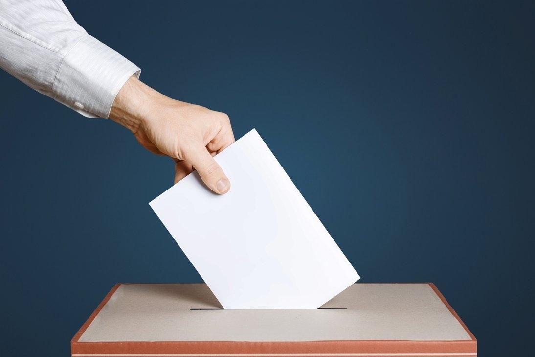 На предварительном голосовании