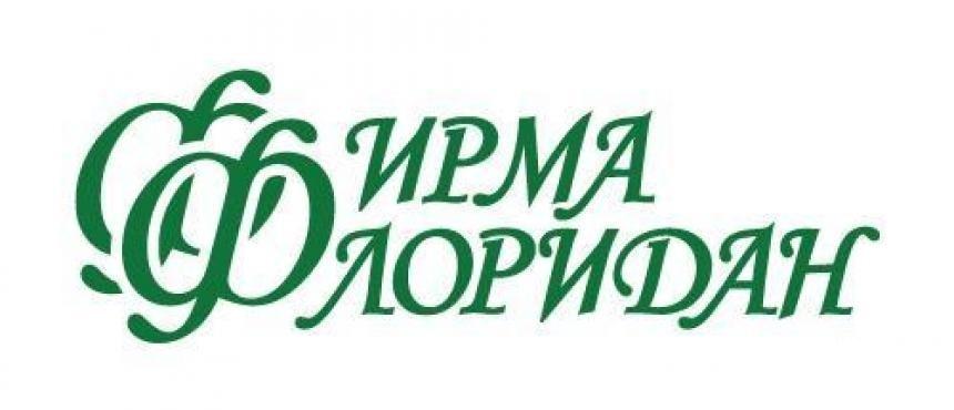 Питание детсадовцев Василеостровского района оценили почти в 130 миллионов рублей