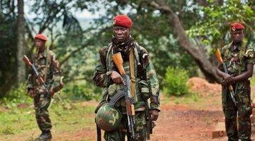 Премьер-министр ЦАР объявил о полном освобождении города Иппи в центральной части страны