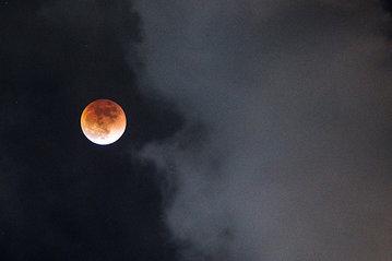 Жители России смогут наблюдать в конце июля два редких астрономических явления