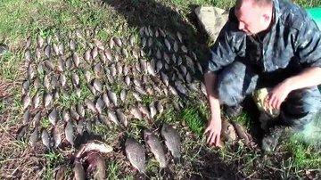 В Саратовской области поймали браконьеров с карасями
