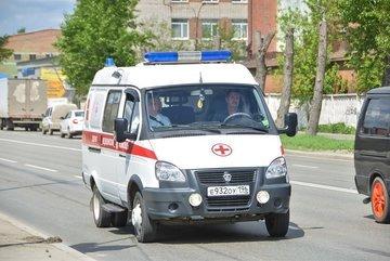 После массового отравления детей в Кронштадте
