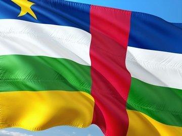 Центральноафриканские силовики задержали десятки нелегалов в столице