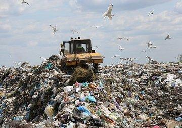 Подмосковные власти планируют изъять мусорный полигон
