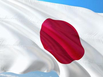 В Токио не будут ограничивать перемещения граждан в ходе ЧС
