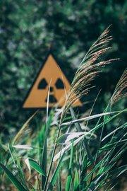 В зоне отчуждения у Чернобыльской АЭС задержали 16 туристов